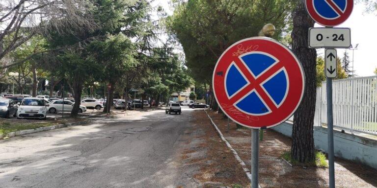 Giulianova, il Comune trova i fondi per il rifacimento di Ruetta Scarafoni dissestata dalle radici dei pini NOSTRO SERVIZIO