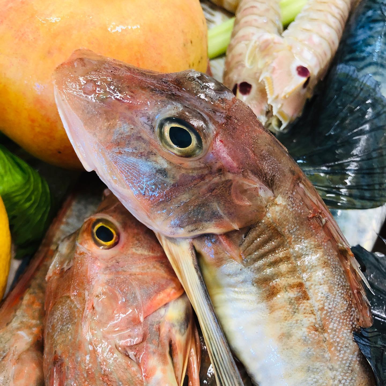 DAL PUGLIESE RISTORANTE Ristorante: il gusto e la qualità in unico piatto