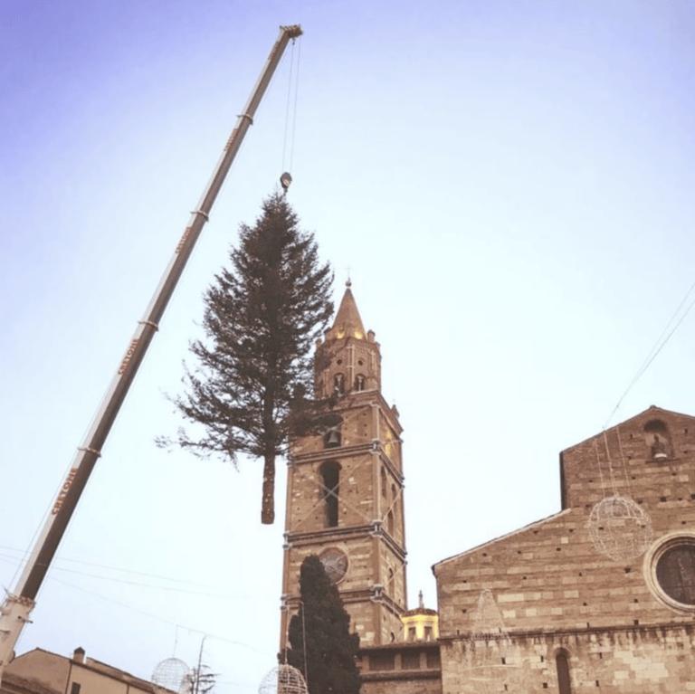 Teramo, l'albero di Natale arriva da Rocca Santa Maria