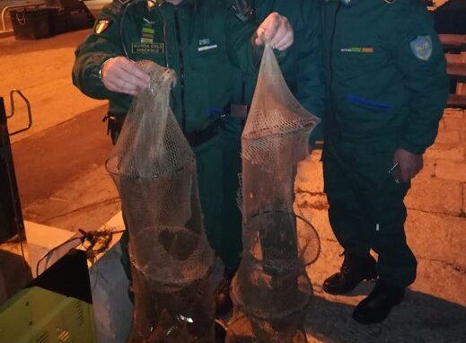 Pescara, i bracconieri si spostano in città: sequestrati cefali, capitoni e anguille-FOTO
