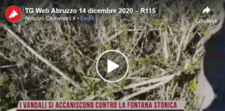 TG Web Abruzzo 15 dicembre 2020