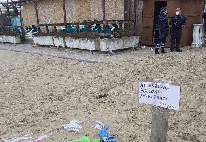 Tortoreto, bocconi avvelenati sulla spiaggia: scatta l'allarme FOTO