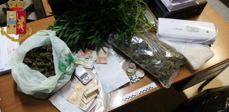 Montesilvano, serra di marijuana in casa: sequestrato oltre 1 chilo di droga