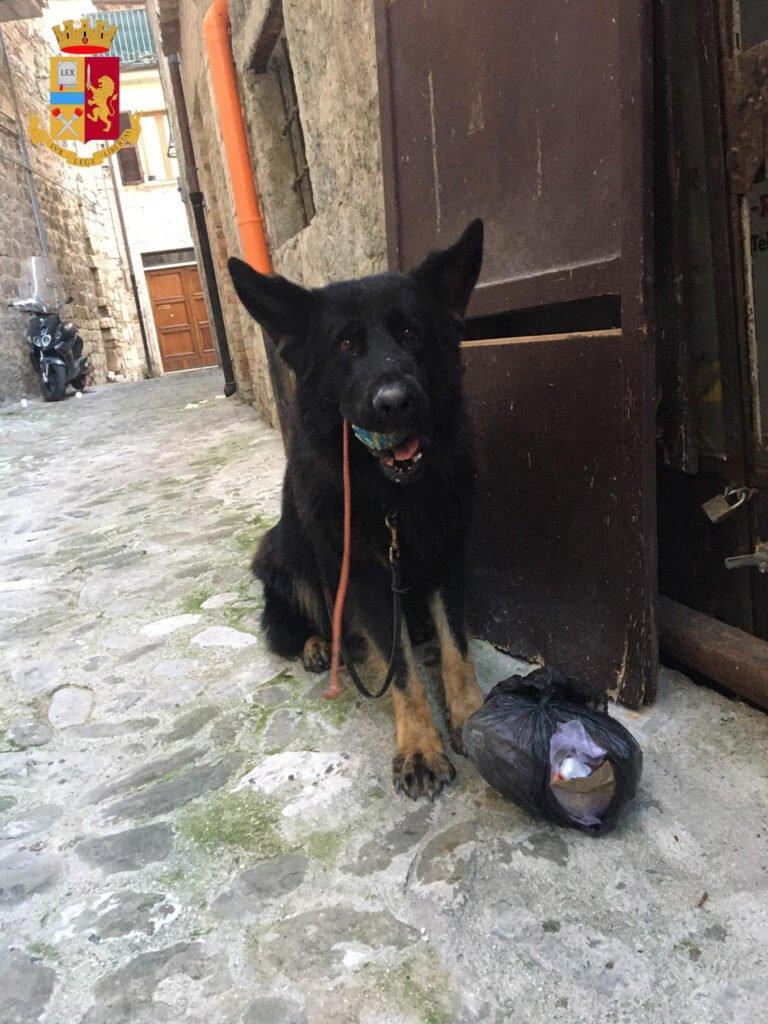 Cocaina acquistata nel Teramano e poi piazzata ad Ascoli: sei in manette
