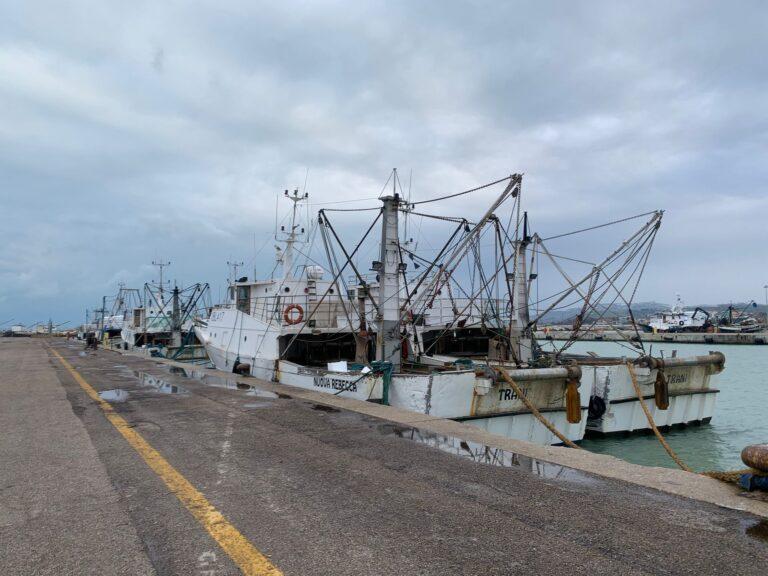 Giulianova, incontro con la marineria per rilanciare il mercato ittico