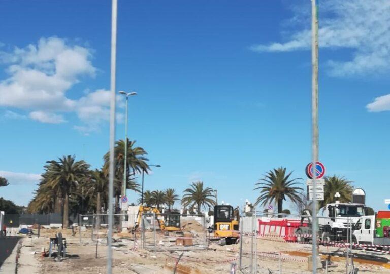 Giulianova, tagliato il pino di Piazza Dalmazia