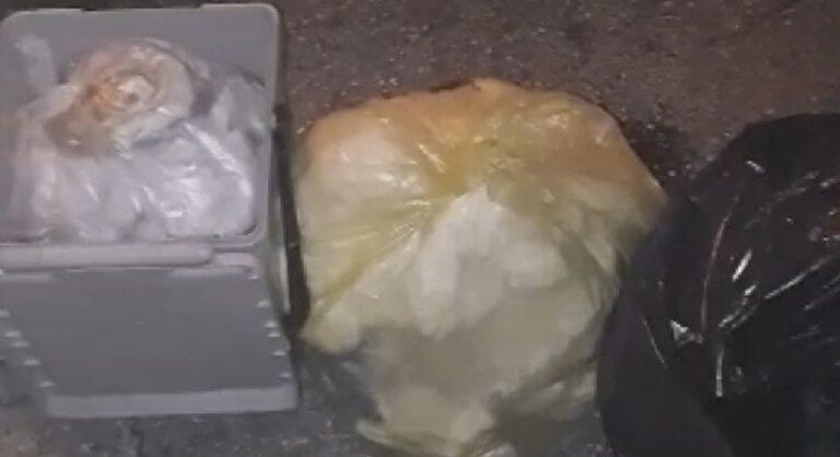 """Teramo, """"mastelli grigi troppo piccoli per i rifiuti di una settimana"""": la denuncia di un cittadino VIDEO"""