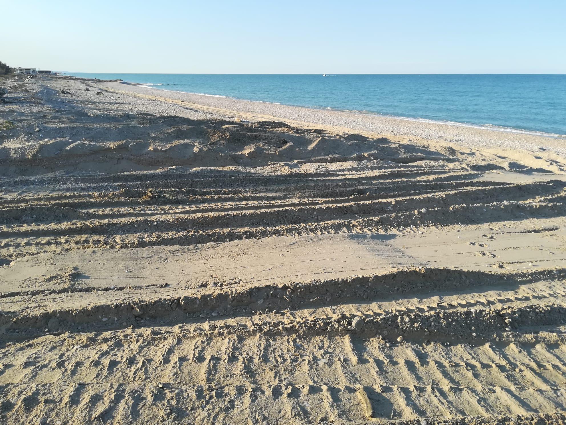 """Pineto: """"Ancora ruspe sulle spiagge"""" FOTO"""