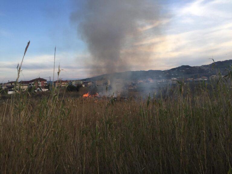 Martinsicuro, ancora un incendio (doloso?) sul lungofiume Tronto