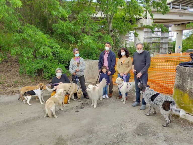 Teramo, riapertura area cani: soddisfatto il consigliere Verzilli