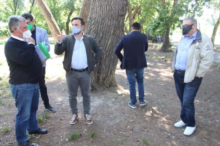 "Pescara, via Pantini: ""Da tagliare al massimo 20 alberi"""