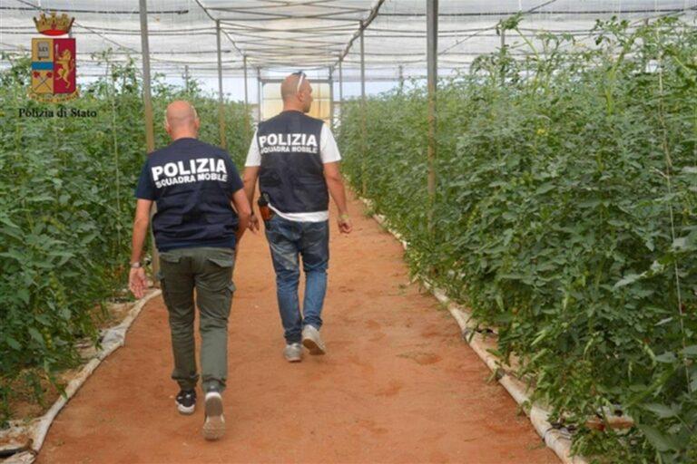 Braccianti agricoli nella piana del Fucino: controllo straordinario della polizia