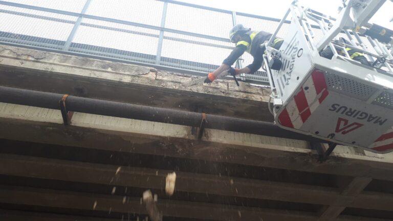 Teramo, distacco di calcestruzzo: chiuso un cavalcavia della zona industriale a Sant'Atto