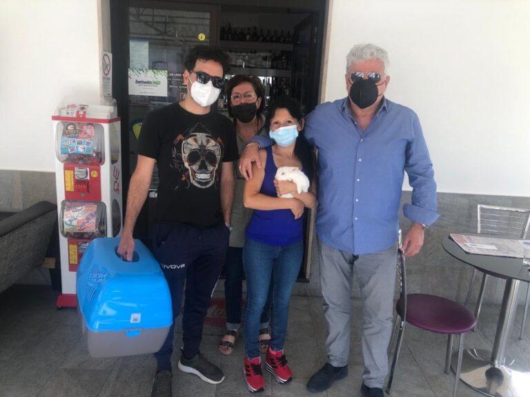Piano d'Orta: il coniglietto mascotte sparito, ritrovato a Ortona dopo 20 giorni
