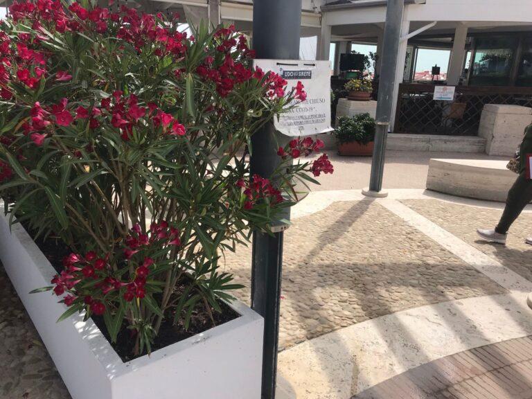 Pescara, piazza Le Laudi: il varco chiuso arriva in Consiglio