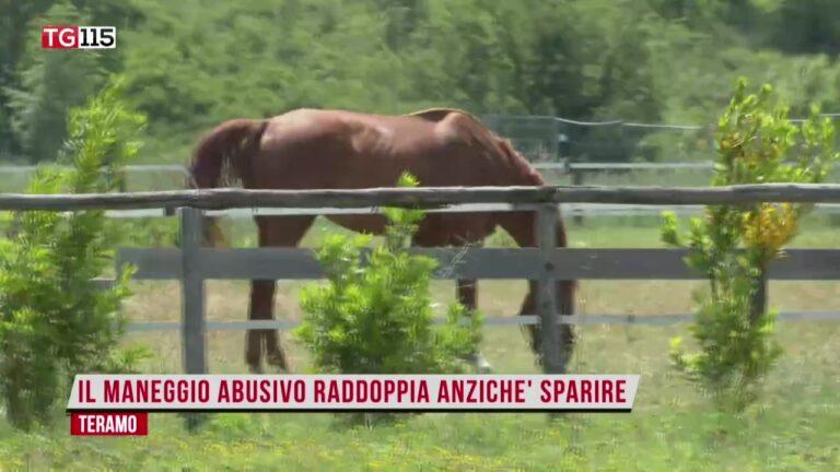 TG Web Abruzzo 9 giugno 2021 – R115 VIDEO
