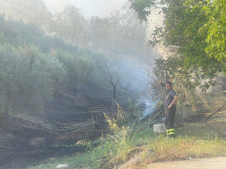 Bellante, incendio a Villa Ardente. Fiamme vicino ad un'abitazione FOTO