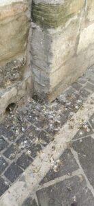"""Atri, """"La cattedrale è nel degrado"""": Italia Nostra scrive alla Soprintendenza"""