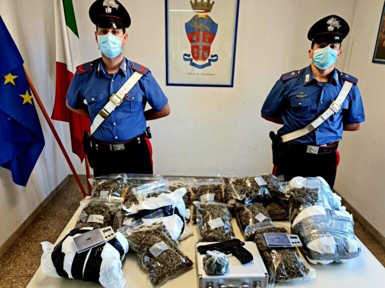 Giulianova, arrestato spacciatore della movida: in casa 10kg di erba