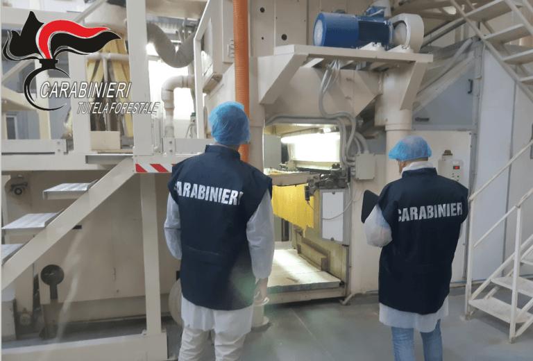 Pastifici abruzzesi: controlli in 9 aziende da parte dei carabinieri forestale