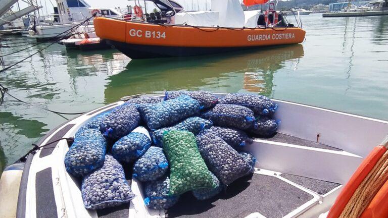 Pescara, la Guardia Costiera sequestra 280 chili di vongole
