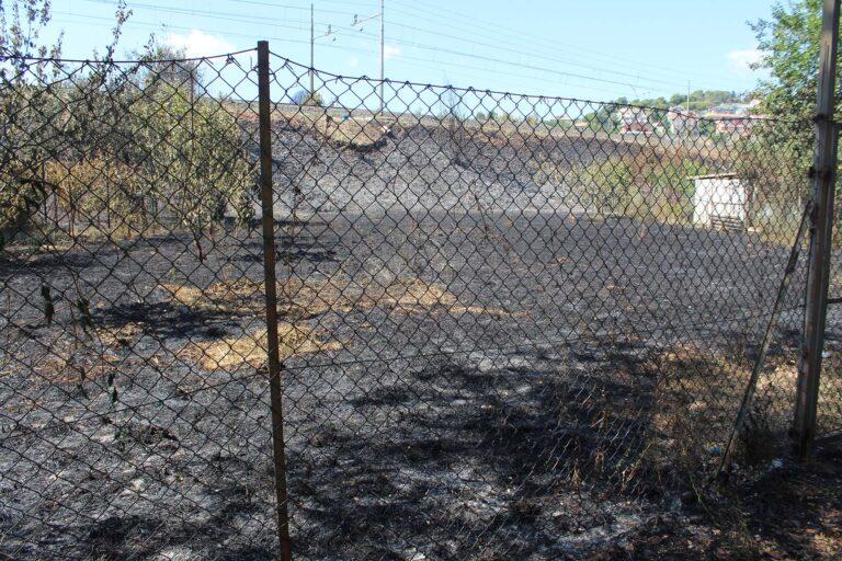 Incendio Pescara, focolai ancora accesi: bruciati 60 ettari-LE IMMAGINI DELLA PINETA OGGI
