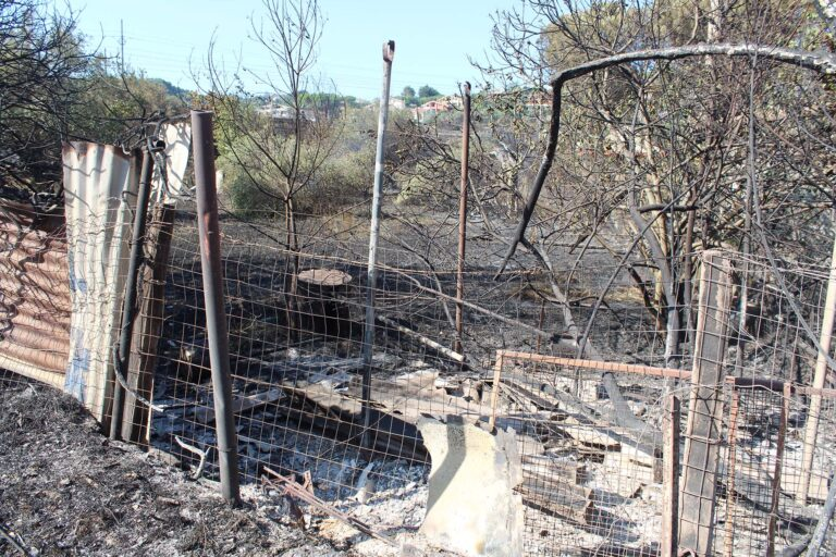 Incendi in Abruzzo. Anci: coordinamento solido e più risorse