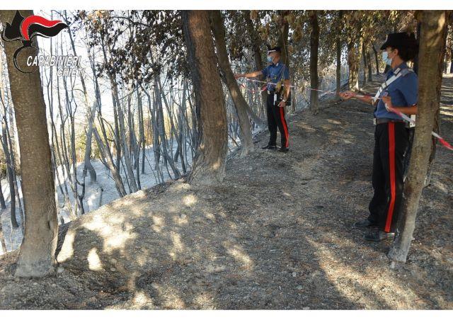 Incendi lungo la Costa dei Trabocchi, identificato l'autore che ha scatenato le fiamme a Torre Pizzis di Ortona