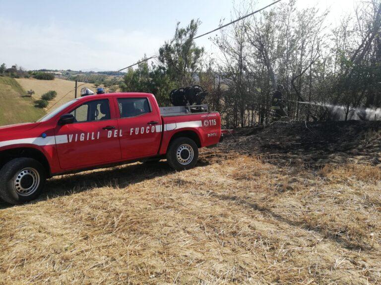 Emergenza incendi nel teramano, a fuoco anche Bellante. Spenti nuovi focolai a Sardinara FOTO VIDEO
