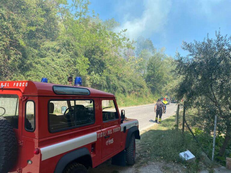 Incendi in Abruzzo: gli ambientalisti chiedono di stoppare la caccia per non stressare la fauna