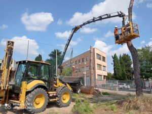 Jonni Calabrese S.r.l.: opere di riqualificazione urbana