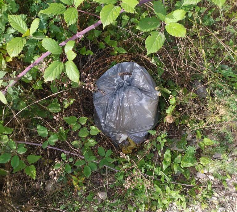 """Teramo, sorpresi ad abbandonare rifiuti: """"fototrappolati"""" e multati FOTO"""