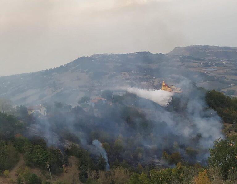 Cermignano, l'incendio di bosco partito da un barbecue: individuato responsabile