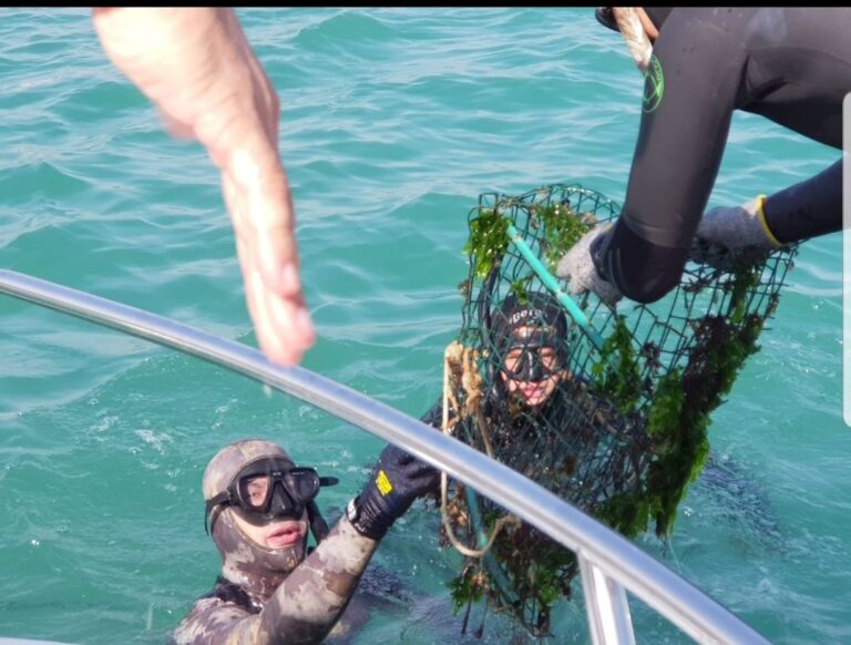 Puliti i fondali marini tra Giulianova e Cologna Spiaggia