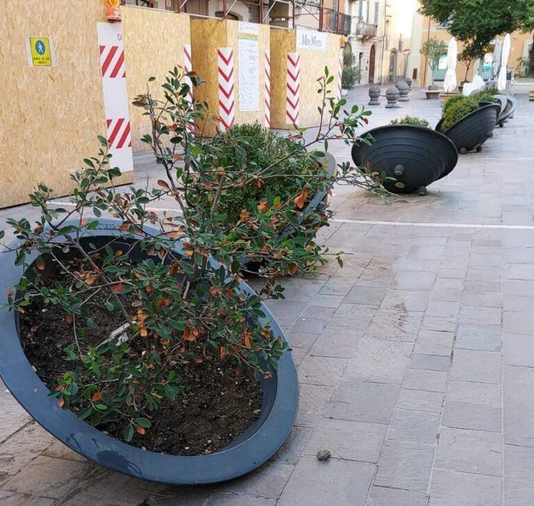 Teramo, atti vandalici contro le fioriere vicino il Duomo FOTO