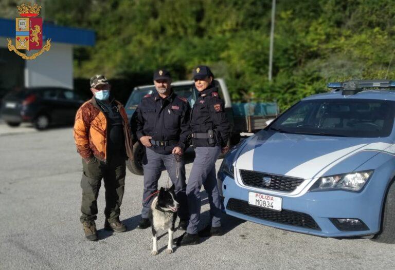 Sulmona, poliziotti ritrovano 'raro' cane scomparso da giorni