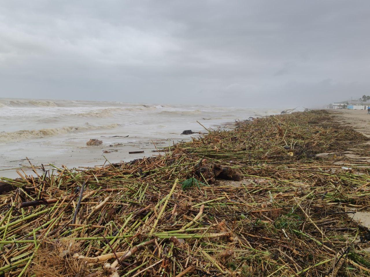 Alba Adriatica, mucchi di spiaggiato dopo l'ultima mareggiata VIDEO